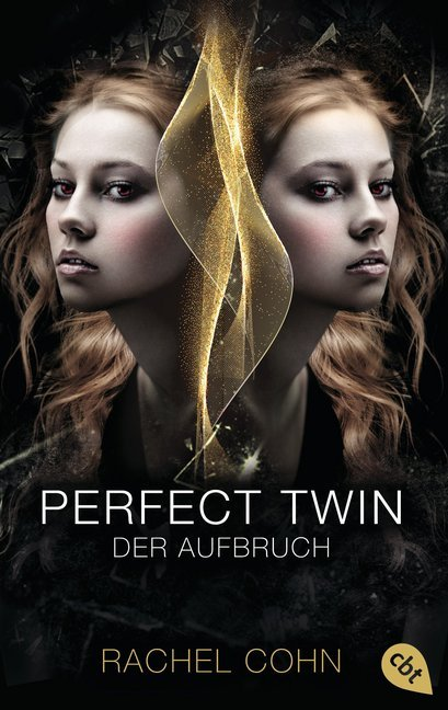 Cover Perfect Twin - Der Aufbruch