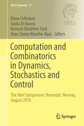 Computation and Combinatorics in Dynamics, Stochastics and Control