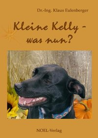 Cover Kleine Kelly - was nun?